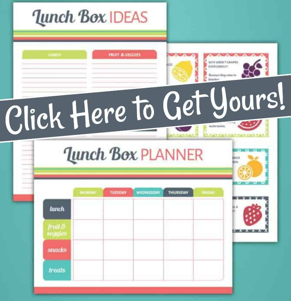 printable school lunch planner