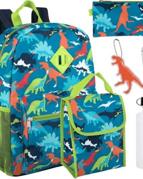 dinosaur backpack, lunchbag, water bottle, pencil pouch and keychain