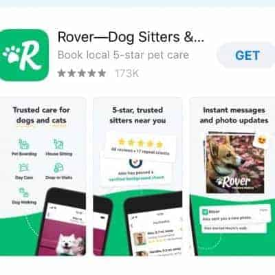 rover app - dog and cat sitters