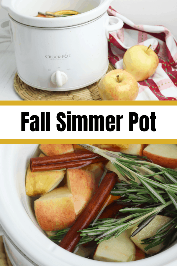 Fall Simmer Pot for apple spice