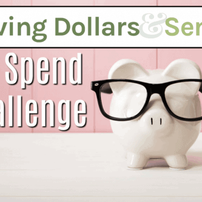 No Spend Challenge free guide