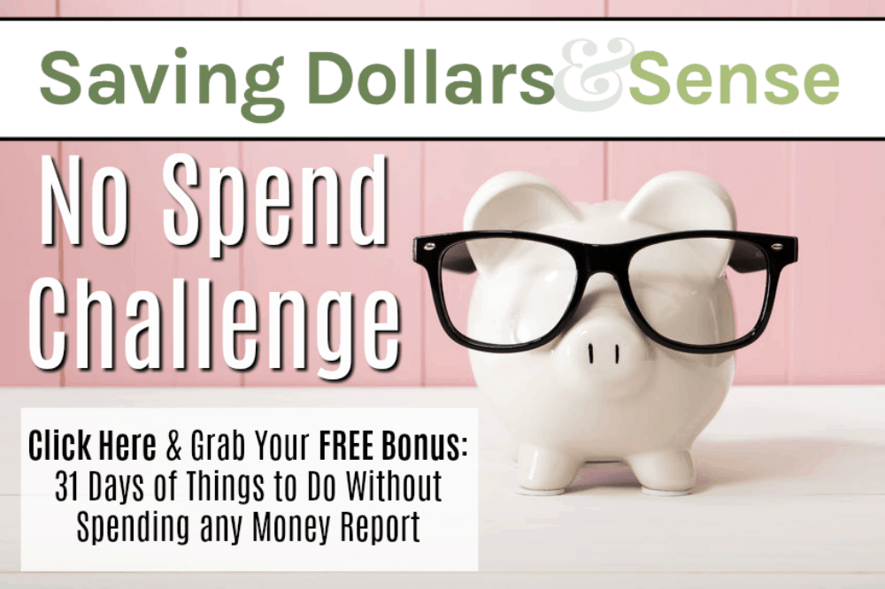 No spend challenge. How to not spend money.