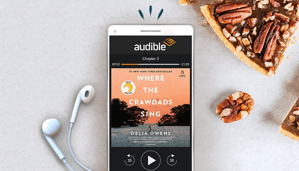 Free Amazon credit for Black Friday audible.