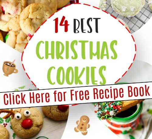 Free Christmas recipe book. 14 best Christmas cookie recipes.