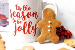 gingersnap cookies recipe
