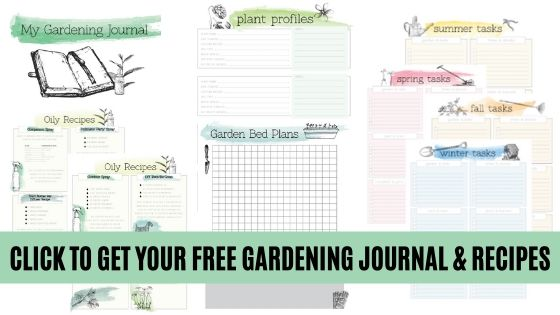 Get your free gardening journal and recipes.