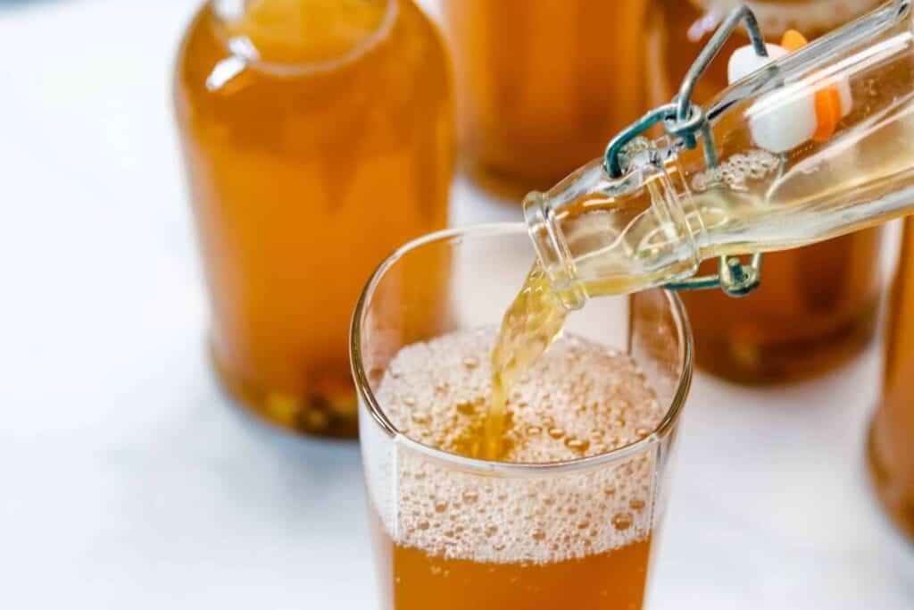 Ginger Kombucha recipe