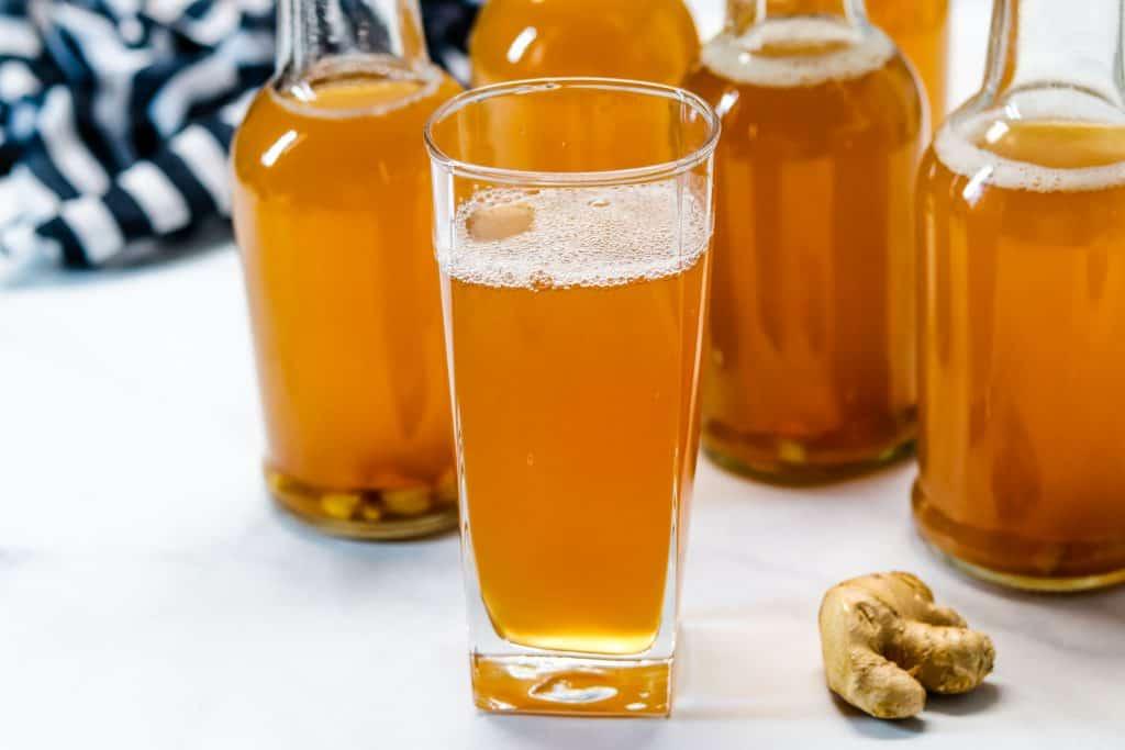 Homemade Ginger Kombucha Recipe