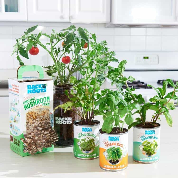 Free organic gardening kit for kids.