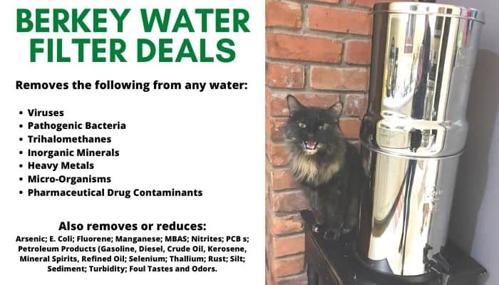 A cat sitting next to a water filter from Berkey water filter deals.