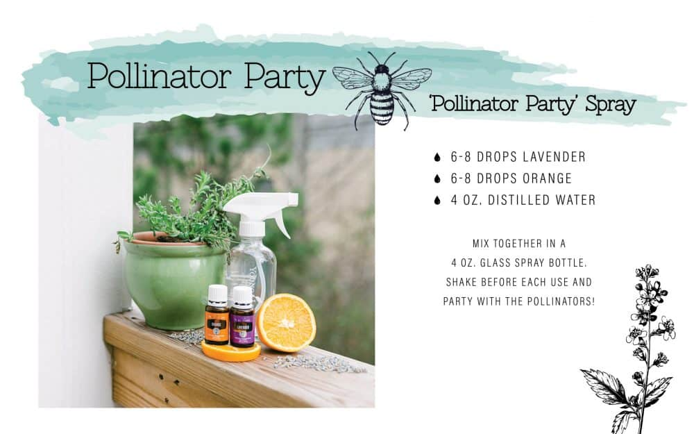 Pollinator spray recipe.