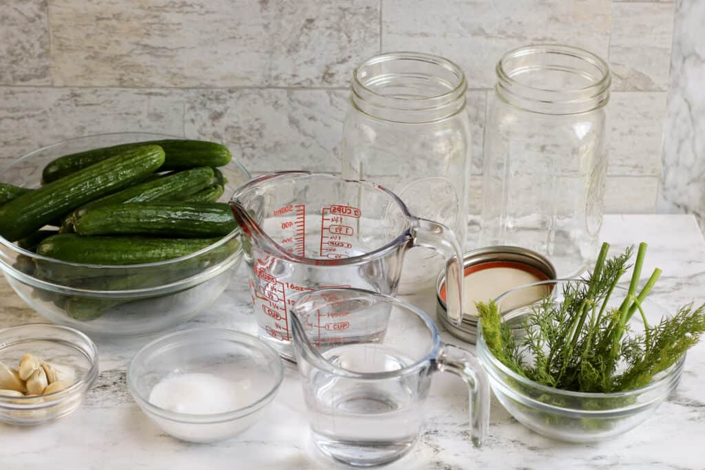 An assortment of ingredients and supplies to make pickles.