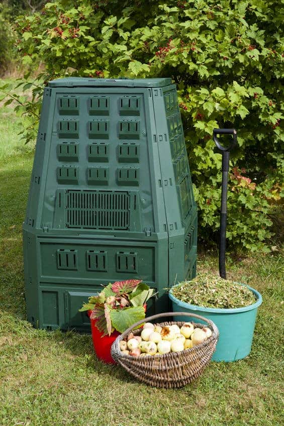 Compost bin outside with items that can go into the compost bin.