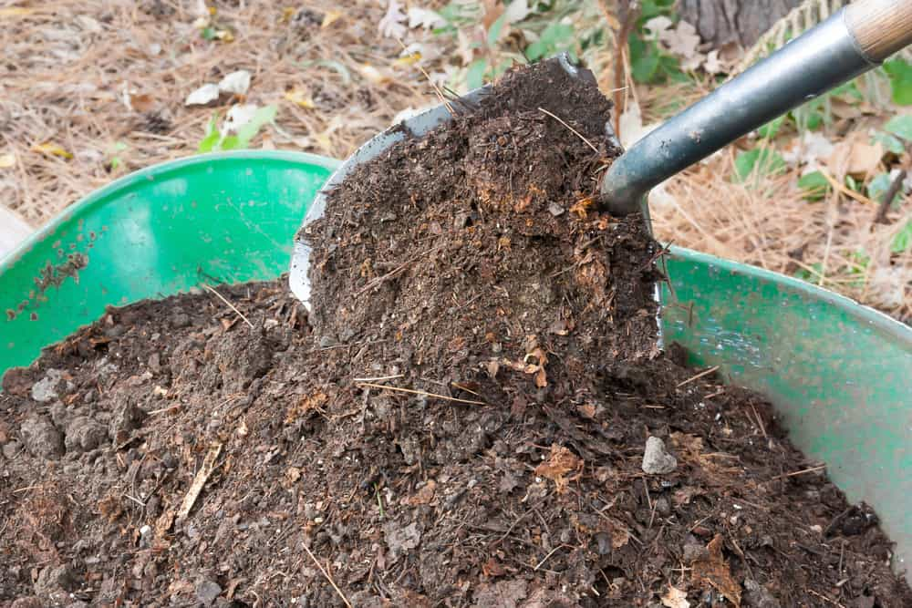 wheel barrel full of mulch with someone removing a shovel full of mulch.