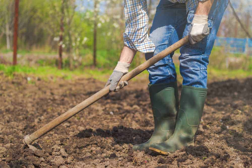 Woman gardening in the spring. Hoe in the ground.