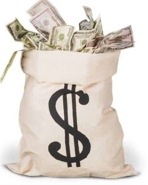 A bag with a dollar sign full of money.