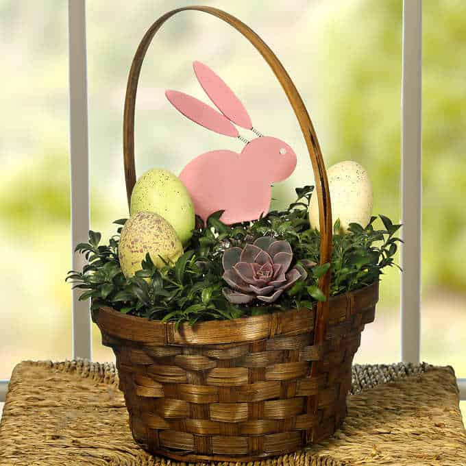 Succulent Easter basket with decorations.