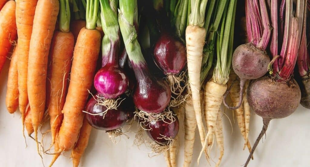 A variety of root vegetables.